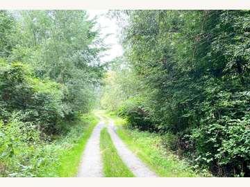 Einfamilienhaus in Magyarlak Bild 09