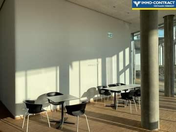 Wohnung in Wien Bild 14