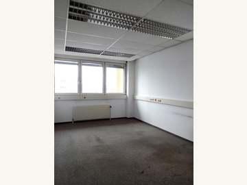 Büro in Wien Bild 03